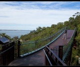 featured image Fotorundgang: Kings Park, Perth, Western Australia