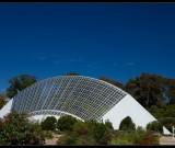 featured image Adelaide Botanic Gardens
